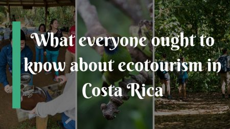 What everyone ought to know about ecotourism in Costa Rica
