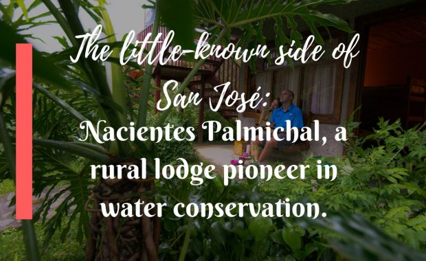The little-known side of San José: Nacientes Palmichal, a rural lodge pioneer in water conservation.