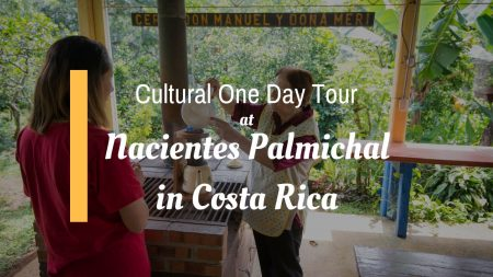 Cultural One Day Tour at Nacientes Palmichal in Costa Rica
